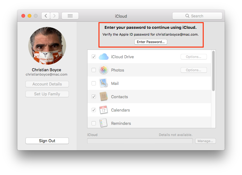 iCloud preference pane, asking that we Enter Password...